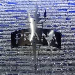 Stainless Steel Logo Prana